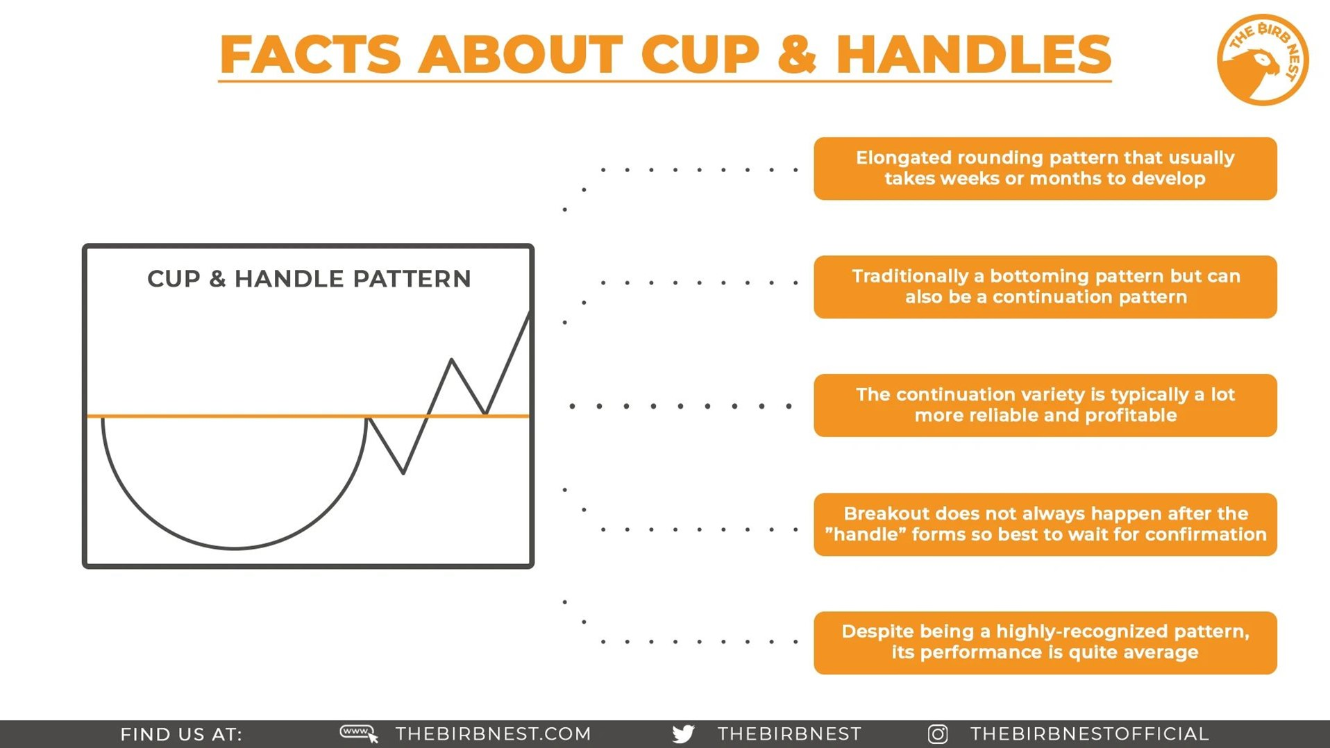 Facts About Cup & Handles