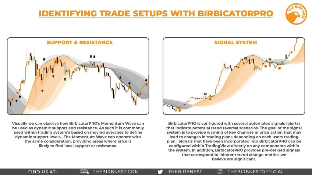 Identifying Trade Setups With BirbicatorPro